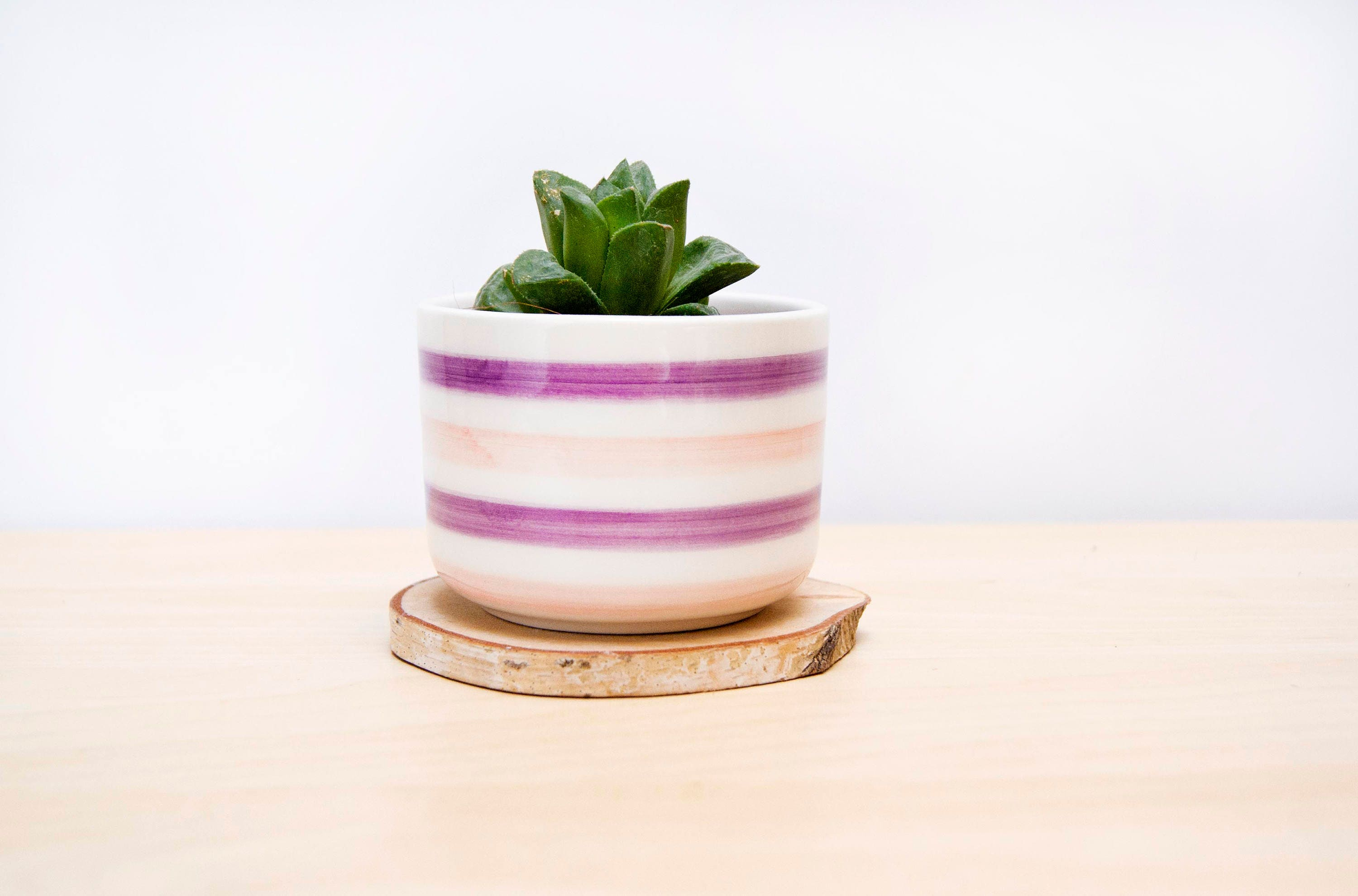 Ceramic Plant Pot Striped Ceramic Planter Succulent Planter
