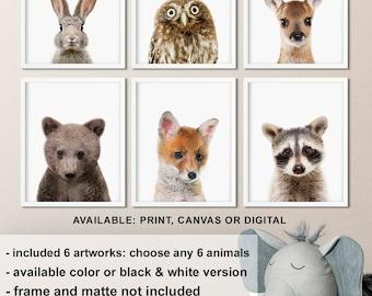 Woodland animal nursery decor, Woodland baby animals, Forest friends nursery, Forest baby decor, Babay Animal photography Print/Canvas/Digi