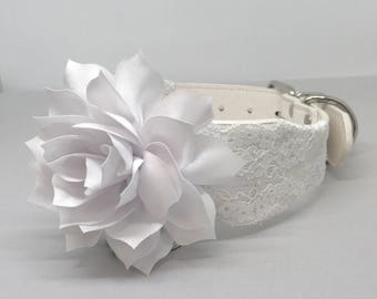White Leather Wedding Dog Collar with White Flower and Lace Medium Large White Leather Pet Collar Flower Dog Wedding Outfit