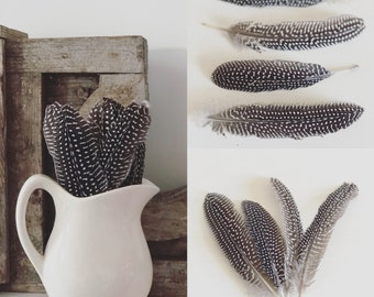 Quail Feathers (sold in bundle of four feathers)
