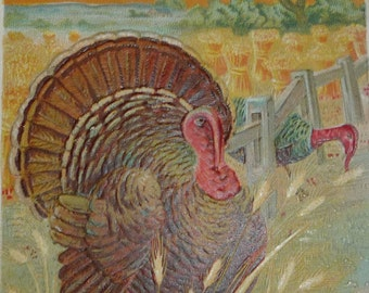 Turkeys in a Wheat Field Antique Thanksgiving Postcard