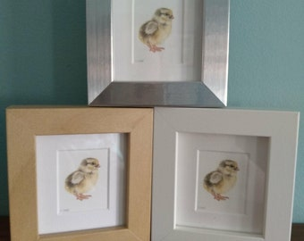 Baby Chicken / Chick Watercolour Painting - Bird - Framed Giclee print - Nature Art - Picture and gift for the home - Mini Frame - Easter