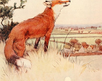 "Cecil Aldin Dog Print ""White Ear and Peter"" (1912) No:12 of 15"