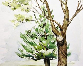 TREE fall, watercolor, 9 x 12 inch Œuvre of original Art