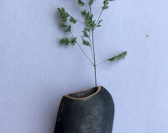 A wearable planter for walkers and countryside explorers. Flower lovers and folks who just like to collect.