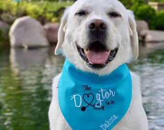 The Dogtor Is In Turquoise Bandana || Therapy Dog Reversible Bones Tie Pet Scarf || Puppy Gift by Three Spoiled Dogs
