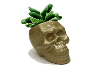 Gold Skull Planter, Human Skull Planter, Succulent Pot, Cactus Planter Gifts, Minimal Plant Pot, Office Planter, Planter Desk Modern