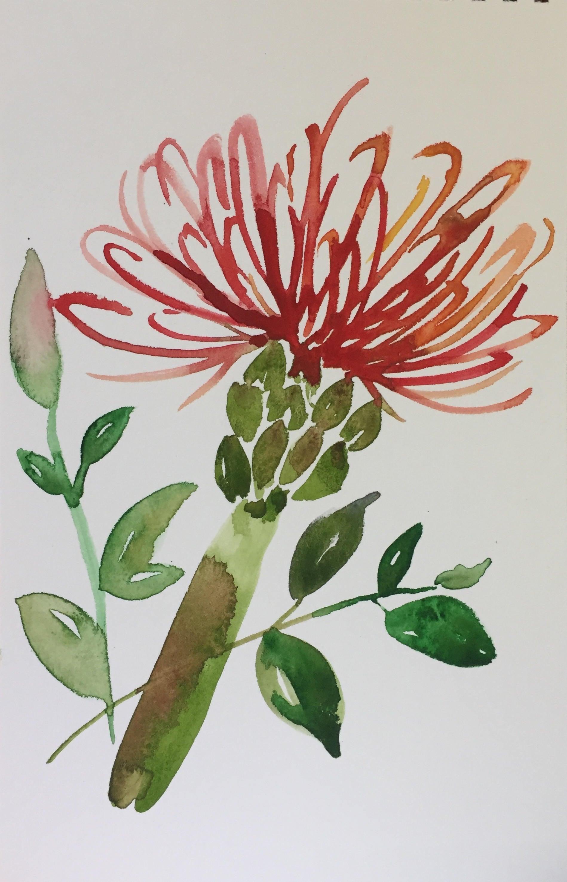 Flower Bloom