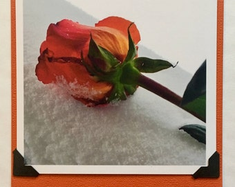 Winter Rose Photo Pop Out Note Card