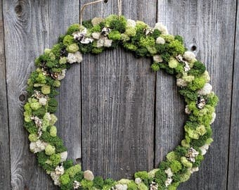 Wreath with Reindeer Moss and Lichen Accents 18 inches ( Option to Add Air Plants ) - Home Decor
