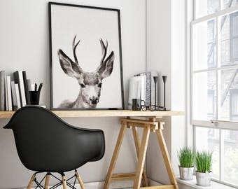 Antler Deer Print, Woodland Deer Print, Nursery Deer Decor, Nursery Deer Print, Woodlands Deer Art, Woodland Nursery, Deer Print, Woodlands