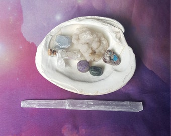 Reiki infused seashell bundle with celestite, cavansite, charoite, seraphinite, apophyllite, kunzite, selenite, hand mined quartz cluster