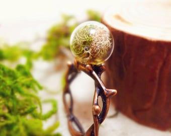 Nature Ring, Moss Terrarium Ring, Thorns Ring, Twig Ring, Tree Branch Ring, Real Plant Ring, Nature Statement Ring, Boho Ring, Bohemian Ring