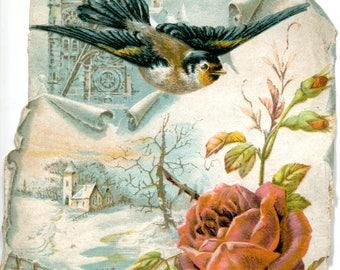 Chromo, snow, bird and roses
