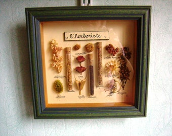 "floral frame, wall decor, ""The herbalist"" Herbarium, french craft, Vintage,"