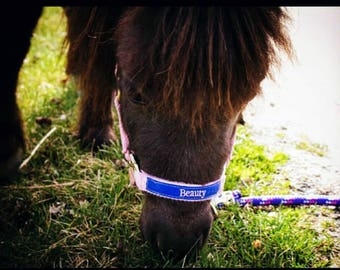 Custom Personalized Horse Halter w/ Embroidered Name on Noseband.  Pony Halters, Mini Halters, Oversize available. Monogram horse halters