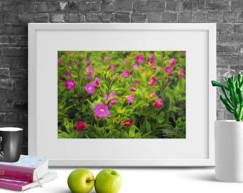 "Ireland Poster ""Great Willowherb Blossoms in the Irish Countryside"" Ireland Print, Irish Photography, Ireland Art, Irish Landscape, Wall Art"