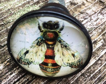 Honey Bee Under Glass Drawer or Cabinet Knob
