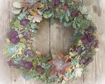 "Extra Large 18"" Succulent Wreath"