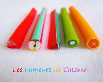 10 polymer clay fruit canes / polymer / greedy jewelry / cane /nail decoration nail art fimo