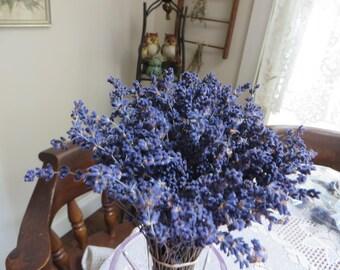 DRIED LAVENDER BUNDLE          Dried Lavender  Long Stem Lavender   Vase Lavender