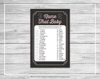Chalkboard Baby Shower Name That Baby Game - Printable Baby Shower Name That Baby Game - Pink Chalkboard Baby Shower - Baby Names - SP155