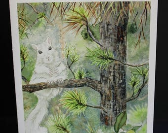 White Squirrel / Black Pine Greeting Card, 5 by 7 inches, with white envelope