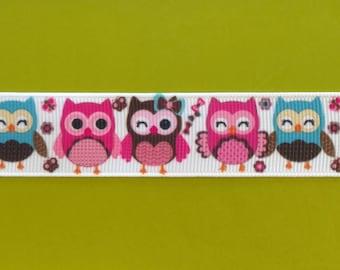 Sleeping & Awake Owls (7/8, 22 mm) Grosgrain Ribbon