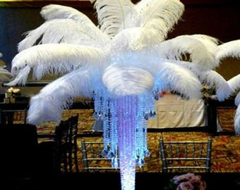 New 10 PCS  Quality Natural Ostrich Feathers 12-14 Inch White Color....Free Shipping in US!