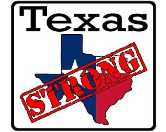 Texas State (K2) Strong Vinyl Decal Sticker Car/Truck Laptop/Netbook Window