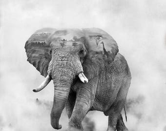 elephant, double exposure,black and white,photography,home decor,wall decor
