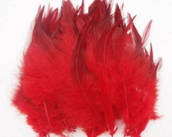 MAXI (PROMO) set of 50 various confections M110 premium feathers