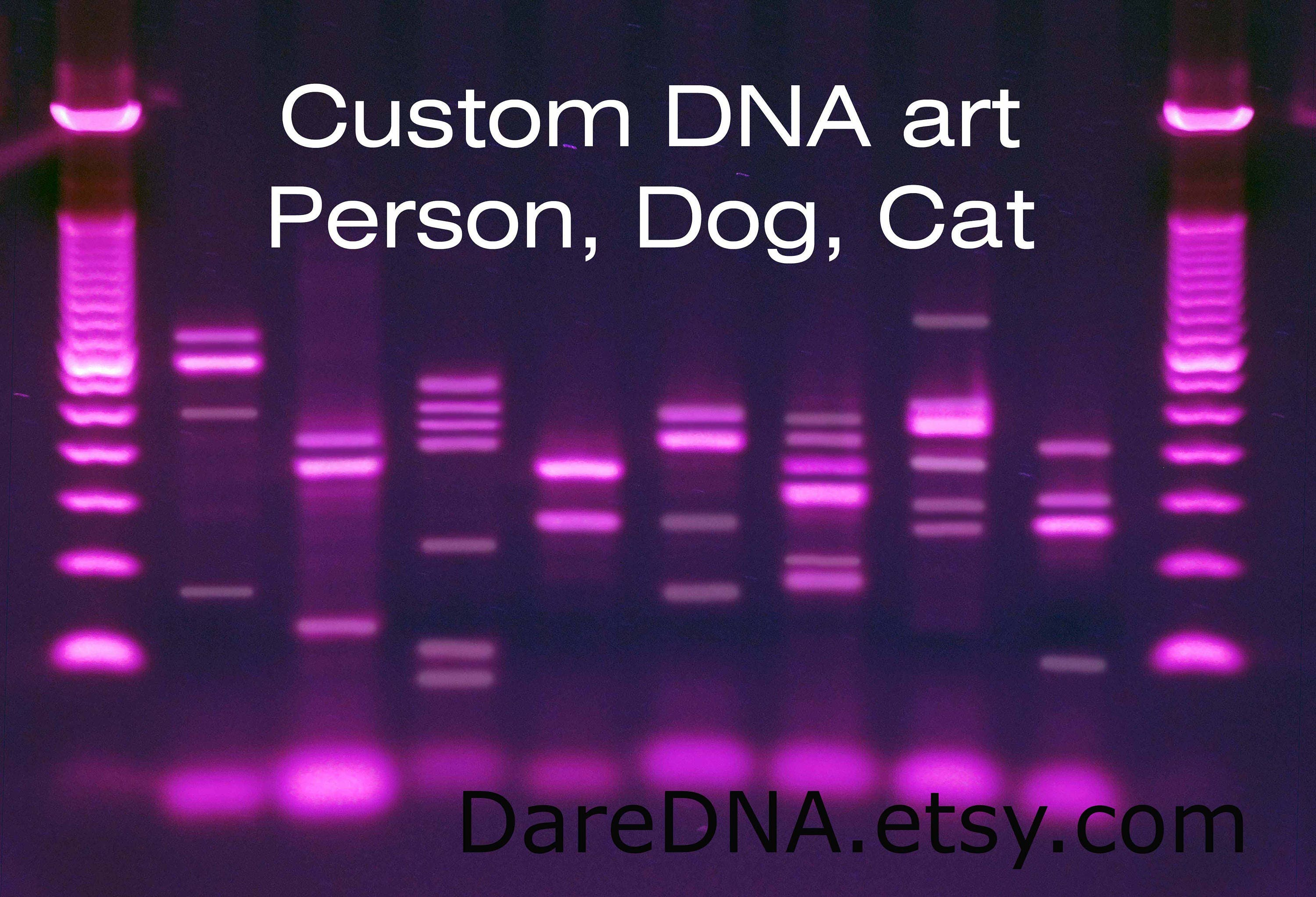 Custom people dog cat dna canvas genetics wall art purple for Personalized dna art