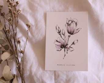 Magnolia postcards | Single Card | A6 | Blank Cards | Prints | Small | Botanical | Colour print | Wall art | Stationery