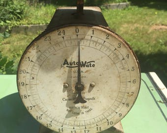 Antique Auto Wate Scale - 1920s