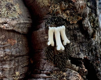 Coyote Toe Bone Necklace - Taxidermy - Animal