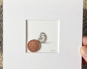 Hedgehog II, original miniature watercolour painting 2.54cm x 2.54 cm