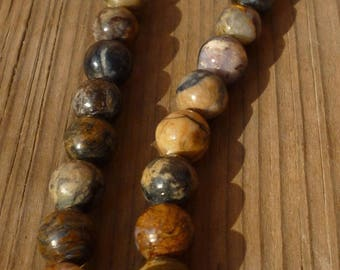 colorful Petrified tree, tree fossil beads 12mm 10 beads