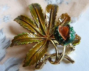 1950s Signed EXQUISITE Horse Chestnut Brooch, Leaf Series, Enameled Pin, Conker