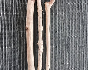 3 small branches of drift wood - wood seawood Driftwood branches