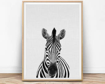 Zebra Print, Zebra Wall Art, Nursery Wall Decor, Nursery Animal Print, Wall Art, Digital Print, Grey and White, Peekaboo, Peekaboo Animal