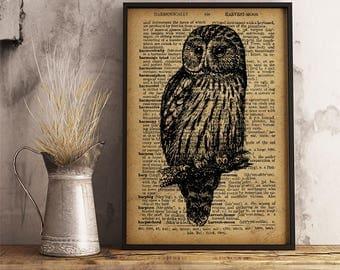 Bird Ural Owl Print Strix Uralensis Forest and Woodland Aggressive Bird Graduation Gift for Ornithologist Cabinet Rustic Decor ideas AN42