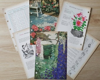 6 x Vintage Gardening Book Pages