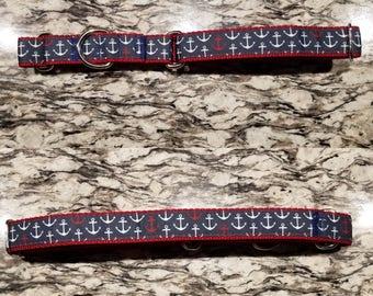 "1"" Ribbon Collar- Martingale"