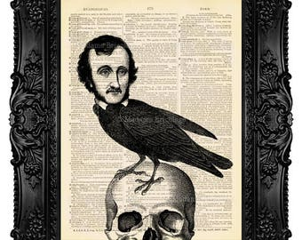 Nevermore Raven, Literary Wall Art, Art Print, Home Decor, Edgar Poe Print, Edgar Allan Poe, Wall Art, Gift For Him Literary Gift no. 321