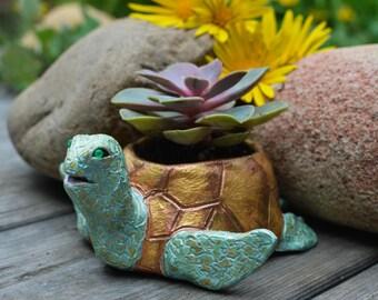 Handpainted Turtle Etsy