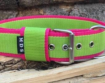 """Dog collar - dog - collar strap - collar Doggy """"Colors - green/Fuchsia"""