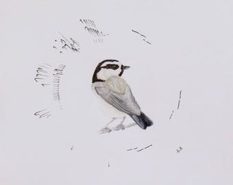 Print of Original Mountain Chickadee Sonogram Portrait Bird Song Print Bird Art Print
