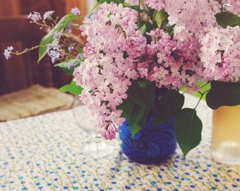 Northern Lilacs in a Warm Light