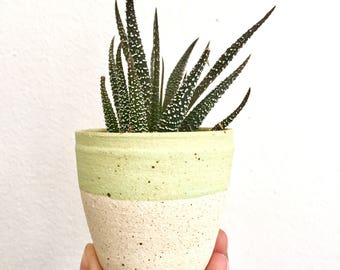 "Green speckled unglazed 2.5"" planter"